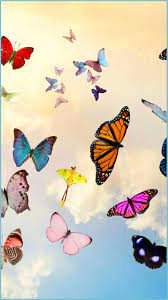 Mobile Wallpapers Butterfly Design ...