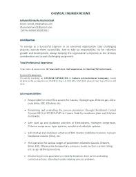 Engineer Resume Examples Professional Affiliations For Resume Examples Beauteous Engineering Resume Examples