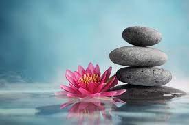 Lotus Zen Wallpapers - Top Free Lotus ...