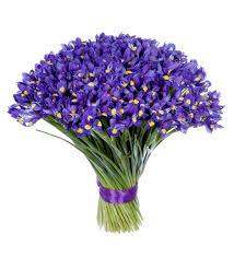 <b>Букет</b>-<b>соло</b> Синие ирисы (35,51,75,101 или 151), Балашиха