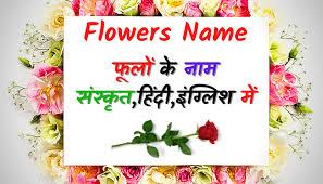 flowers name in sanskrit hindi