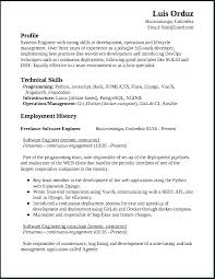 Best Resume Format For Software Developer Sample Of Resume Summary Software Developer Resume Example Resume