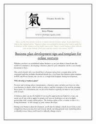 Free Online Business Plan Template Online Ecommerce Business Plan New T Shirt Business Plan Template