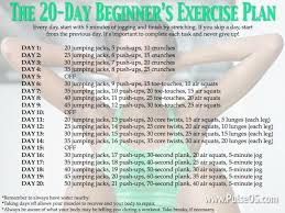 beginner workout plan for women at home inspirational 346 best exercise for beginners images on
