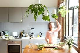 hanging herb garden hanging planter herbs hanging herb garden kitchen