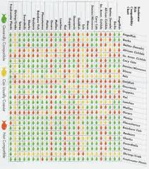 59 Matter Of Fact Fish Compatibility Chart Petco