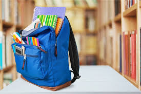 Image result for Travel Backpacks istock