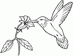 Bird Coloring Pages. Free, Printable, Realistic inside Bird ...