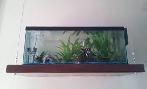 Wall Mounted Fish Tank Light Pin By Anne Faraci On Decorating Floating Shelves Wall