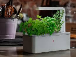 Kitchen Herb Garden Kit Interesting Led Kitchen Garden Supporting Proper Herb Environment