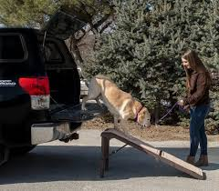 outdoor pet ramp for stairs dog ramp for car 2019 2020 car release date