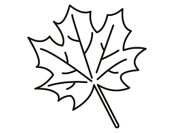 Small Picture Fall Leaf Coloring Page anfukco