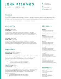 Modern Column Resume Bakchos Professional Resume Template Resumgo Com