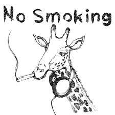 キリンとヘッドホンのおもしろイラストtシャツ Art 動物