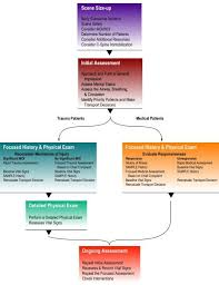 Patient Assessment Flow Chart Www Cprnmore Com Emergency