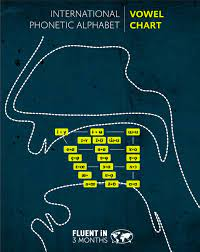 Ipa chart sounds and symbols. The Ipa Alphabet How And Why You Should Learn The International Phonetic Alphabet With Charts
