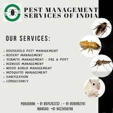 Top 100 Pest Control Services in Goa - Best Residential Pest Control  Services - Justdial
