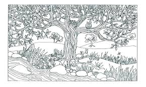 Coloring Pages For Adults Nature Image Scenery Scenes Coloring Pages
