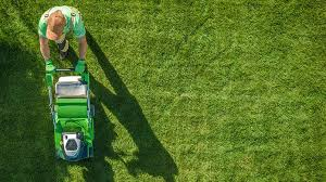 how to start a lawn care business truic