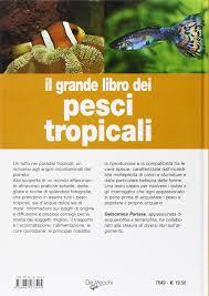 Amazon.it: il grande libro dei pesci tropicali. dacqua dolce e