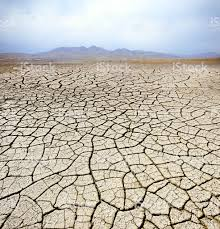 Image result for dry desert