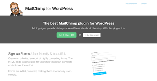 Image result for mailchimp wordpress plugin
