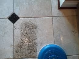 Kitchen Floor Grout Cleaner Tile Grout Cleaning Archives Pristine Tile Carpet Cleaning