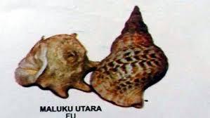 Alat musik tradisional yang satu ini berasal dari maluku. Alat Musik Fu Maluku Utara Artikel Musik Indie