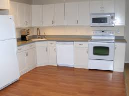 Basement Kitchens Adding A Basement Kitchen Basement Kitchens Decor The Kitchen