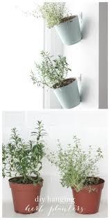 Hanging Kitchen Herb Garden 50 Easy And Pretty Diy Indoor Herb Garden Ideas Page 5