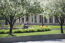 from longer days and shorter terms to wayne state s spring summer tuition break there are plenty of reasons to spend your summer on campus