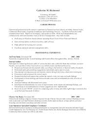 Confortable Resume For Internal Auditor Position With Additional