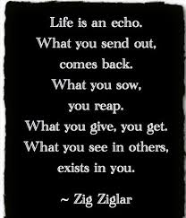 Zig Ziglar Quotes Extraordinary 48 Great Inspirational Quotes By Zig Ziglar
