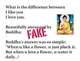 Buddha Love Quotes Cool When You Like A Flower You Just Pluck It But When You Love A