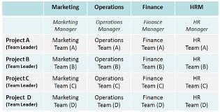 Matrix Structures Business Tutor2u
