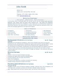 Template Professional Cv Free Template Word Word Doc