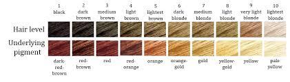 How I Got My Hair Colour Bleaching Lightening Dark Brown