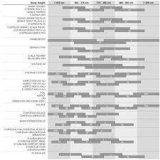 Scott Bike Frame Size Chart Jidiframe Co