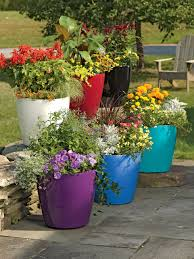 flower pots in various colors in a patio viva self watering rolling planter round large