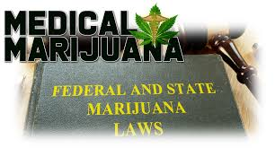 Image result for marijuana hud