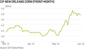 Corn Commodity Price Chart Corn Prices Settle At 5 Year High As Flooding Leaves U S