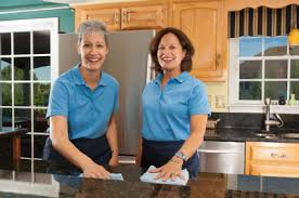 Image result for Cleaning Services istock