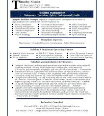 senior executive resume sample executive management resume isale