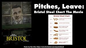 Pitches Leave 6 Bristol Stool Chart The Movie