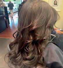 hair color brings to our guests brunette bage haircolor avedacolor nyc