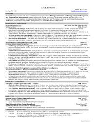 resume cover letter information technology manager free resume