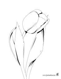 Coloriage Tulipe Les Beaux Dessins De Nature Imprimer Et Fleur Tulipe Coloriage L