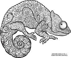 Small Picture Lizard from Awesome Animals Vol 2 coloring books Pinterest