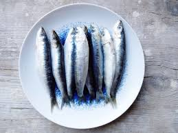 Basteln Malen Kuchen Backen Mehr Meer Kreta Vorfreuden Sardinen