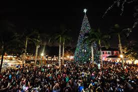 100-ft-christmas-tree-in-delray-beach